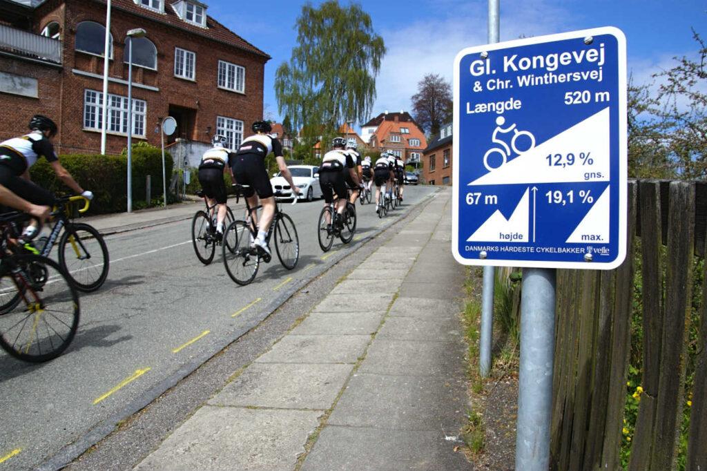 5c54e7e5eec9 Alpe-skilte skal markedsføre Nordeuropas bedste cykel-terræn