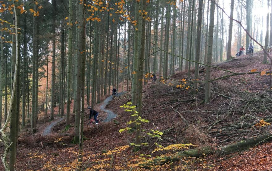 Nyt mountainbikespor slår Vejle fast som cykelkommune nr. 1