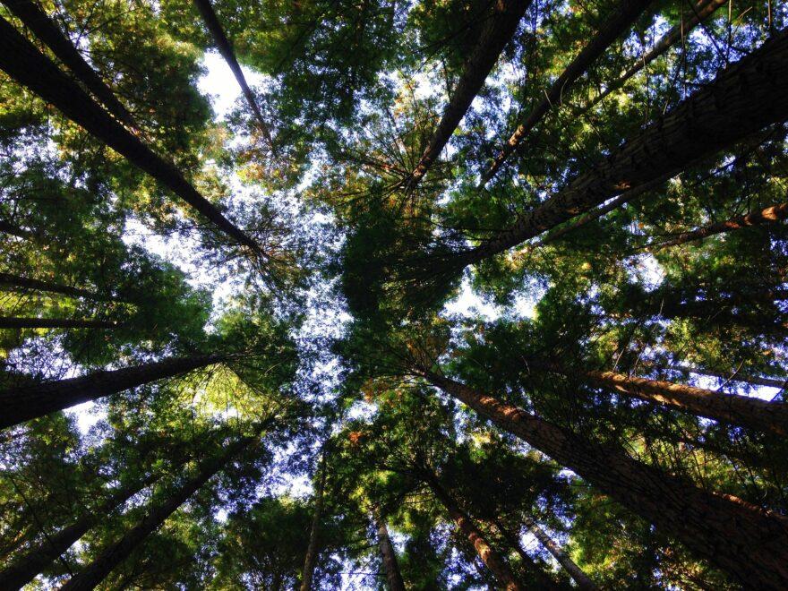 70 pct. reduktion i 2030 slået fast på Klimaudvalgs første møde