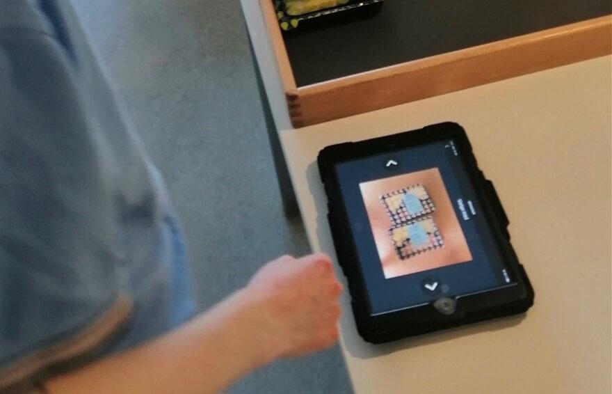 Bosted og it-virksomhed gik sammen om udvikling af ny app: Giver autister mere struktur i hverdagen